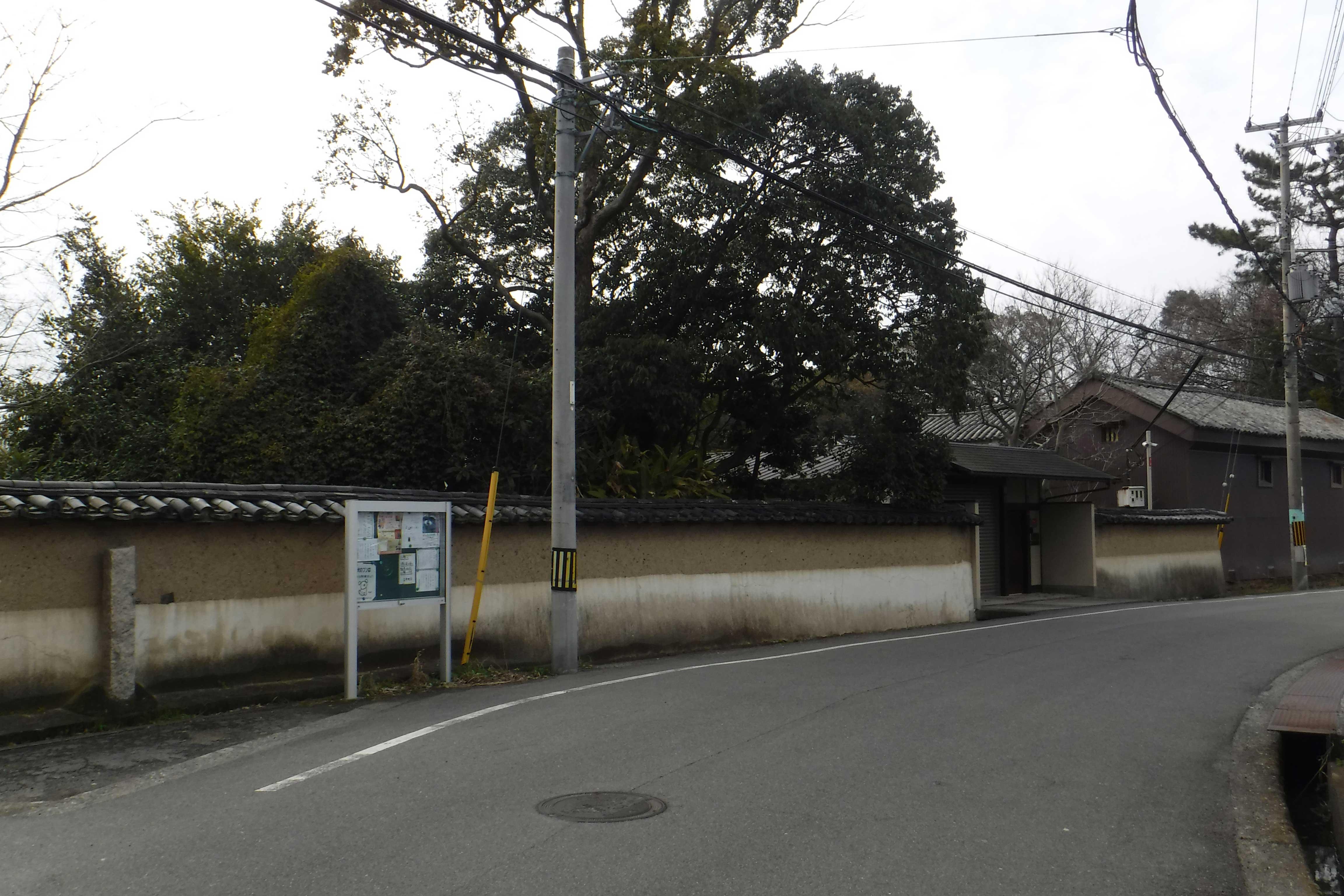 <p>北東側道路から屋敷地を望見</p>
