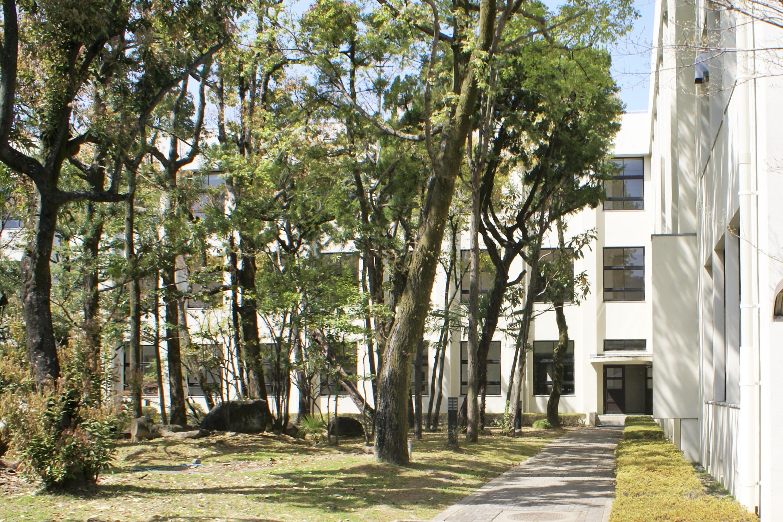 <p>玄関前の日本庭園から南北棟を見る。</p>緑豊かな庭園から南北棟を見る。右手は北側東西棟。本館の計画時には府の財政難の状況下であったために、結果としてコンクリートの単純さをそのまま形にし、機能と構造が素直に外観に表現された建築となった。