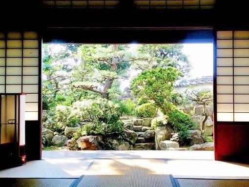 <p>座敷から眺める前栽</p>前栽の向こうは空のみ。時代と時間を忘れさせる落ち着いた癒しの空間。前栽の松に対し背後には松の襖絵。