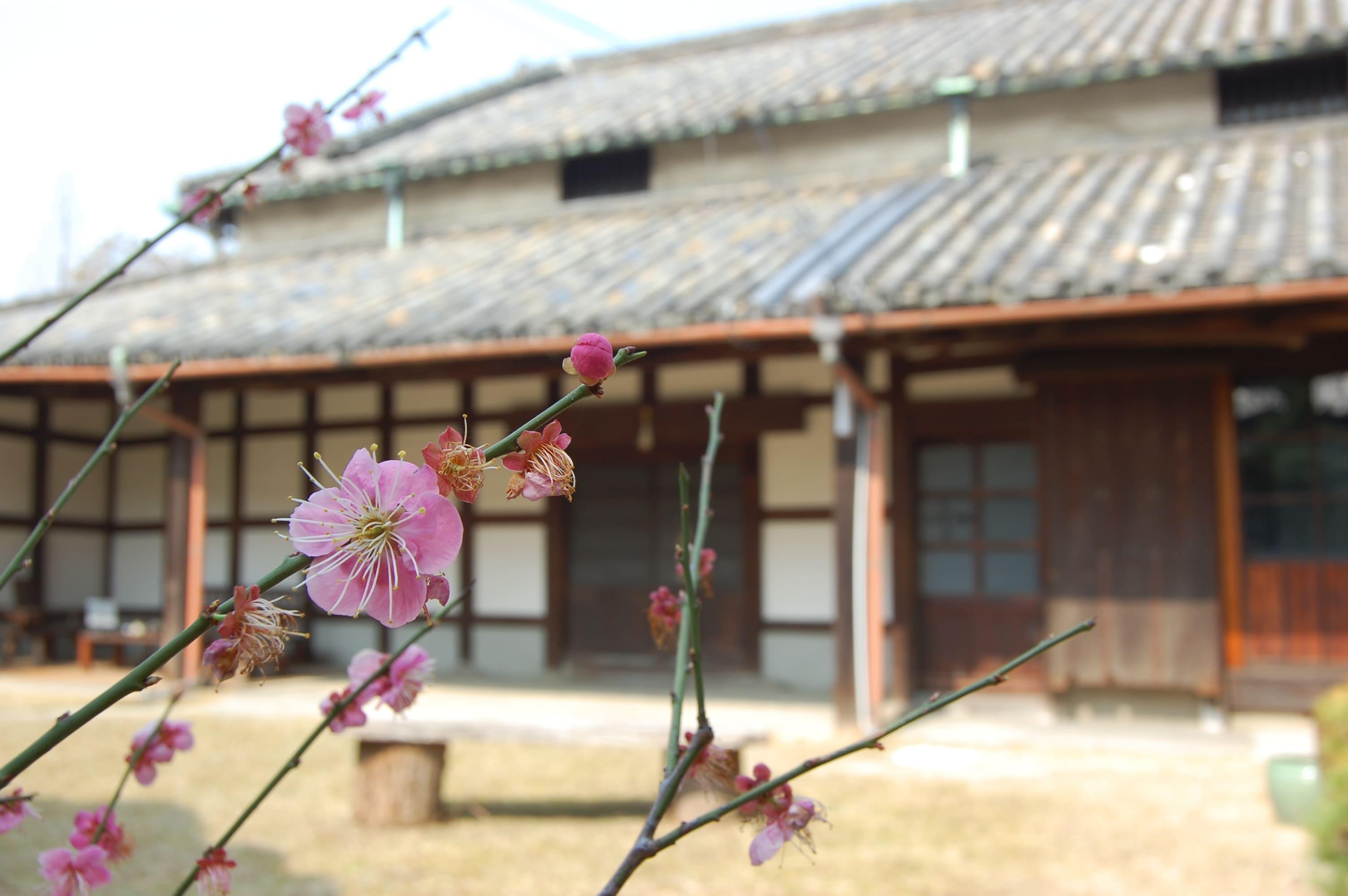 <p>庭園には季節の花が咲く。</p>